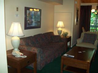 155 Mountain Inn Loop, Wintergreen Resort VA
