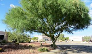 543 East Drawdown Trail #170, Vail AZ