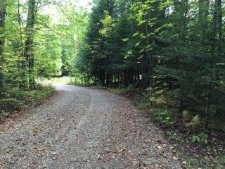 On Lakeview Lane #LOT39 40, Florence WI