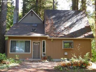 Cabin 196 Northwoods, Cougar WA