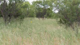 10 Ac Old Cheyenne Trail #5, Abilene TX