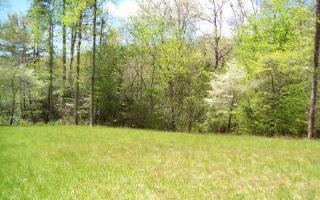 32 Whisper Woods, Hiawassee GA