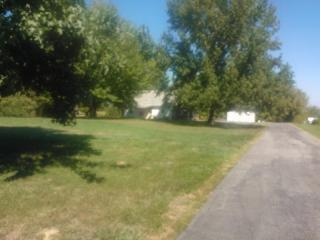 Tbd Egypt Shores Drive 463 464, Creal Springs IL