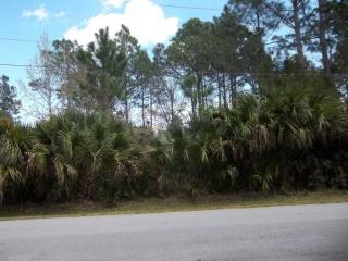 7 Pinelark Lane, Palm Coast FL