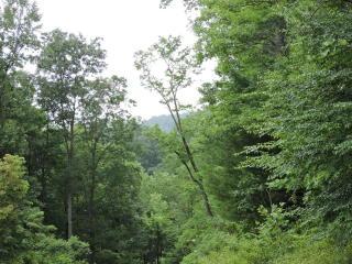 Shangrila Trail, Spruce Pine NC