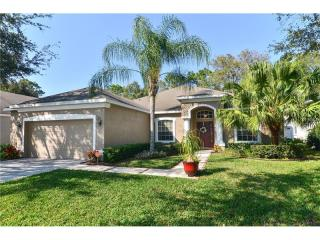 12818 Cattail Shore Lane, Riverview FL