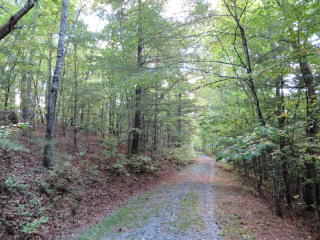 8 Redbay Way 5.29acs, Mineral Bluff GA