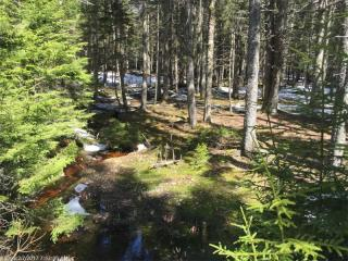 LOT 35 35 FOREST Way, Swans Island ME