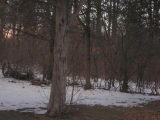 Sunrise Trail, Plattekill NY