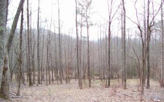2 Whisper Woods, Hiawassee GA