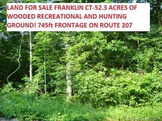 Pond Road, Franklin CT