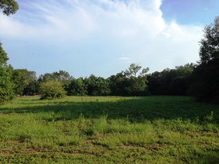 Lot 4 Fieldcrest Lane, Fairhope AL