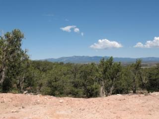 1202 Deer Canyon Trail, Mountainair NM