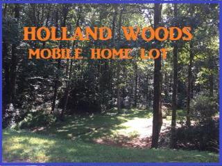 Tbd Holland Woods Drive, Wilkesboro NC