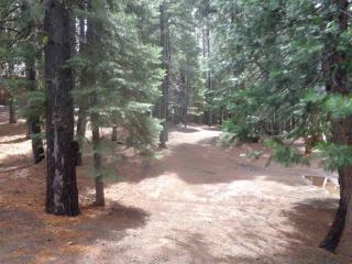 106 Slim Drive #2, Lake Almanor West CA