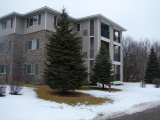 16520 Tranquility Court Southeast #204, Prior Lake MN