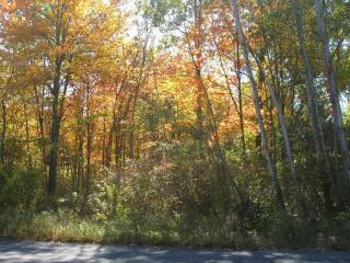 Potwine Lane, Amherst MA