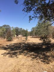 3518 Oakwood Road, Lake Isabella CA