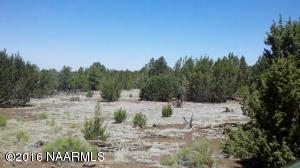 2185 East Clear Point Way, Williams AZ