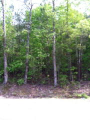 6009 Bend Of The River Road, Rocky Mount NC