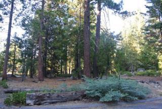 Big Pine Court, Shaver Lake CA