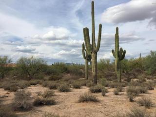 272## North Hayden Road Lot, Scottsdale AZ