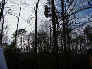 24 Evergreen Lane, Blounts Creek NC