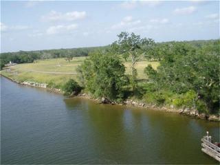 3198 Fm 521 Road, Brazoria TX