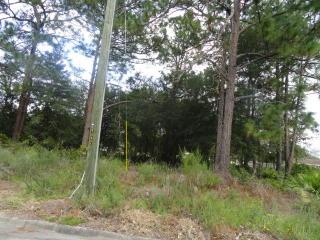 Stonington Lane, Jesup GA