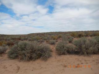 1709 Eucalyptus Road Northeast, Rio Rancho NM