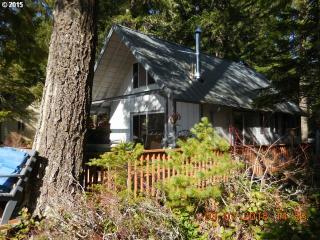 Cabin 11 Northwoods, Cougar WA
