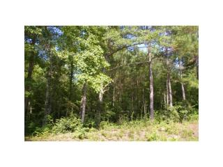 Lot 20 Handley Blvd, Morrow, GA