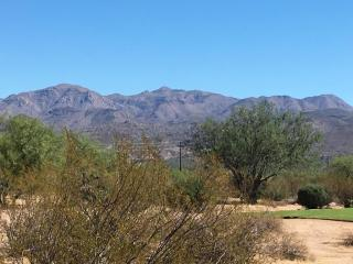 28021 North Desierto Drive #386, Rio Verde AZ