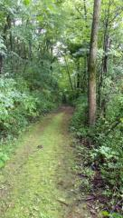 7.65 Ac Diamond Drive, Deforest WI