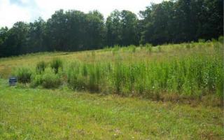 Lot 52 Sharptop Settlement, Blairsville GA