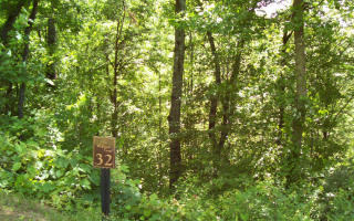 31 32 Wolfpen Gap, Hiawassee GA