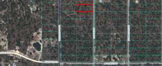 Lot 11 Northwest Holly Road, Dunnellon FL
