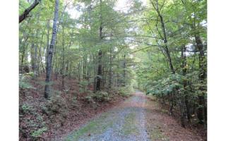 LOT8 Redbay Way, Mineral Bluff GA