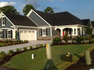 Lot 503 Wood Stork, Conway SC