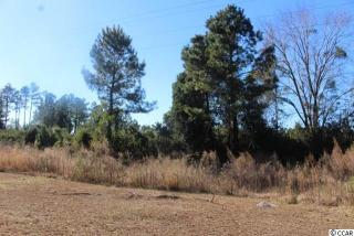 Lot 97 Serenity Place, Conway SC