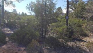700 North Tyler Parkway, Payson AZ