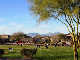 7705 East Fair Meadows Loop, Tucson AZ