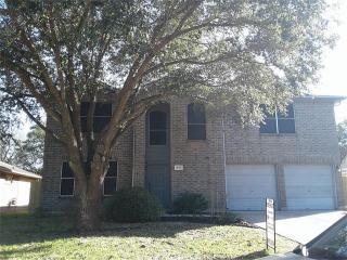 17019 Grampin Drive, Houston TX