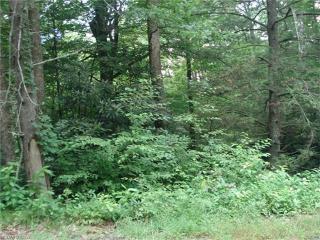 Blue Branch Road, Burnsville NC