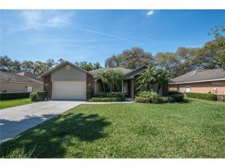 1509 Pinedale Meadows Court, Plant City FL