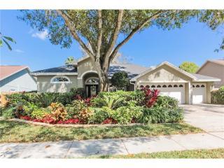 5415 Pine Bay Drive, Tampa FL