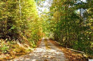 Lot 2 Carrs Creek Road, Townsend TN