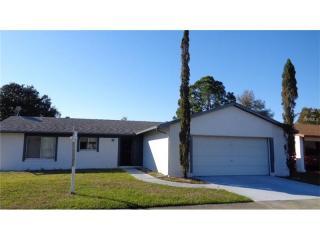 10336 Galliard Boulevard, Orlando FL