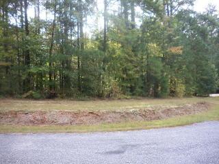 Twin Oaks Lane, Littleton NC