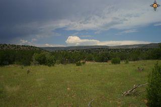Begosa Canyon, Ribera NM